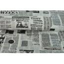 Bavlna noviny 2